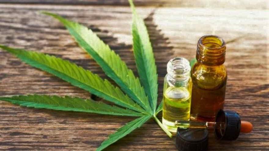 Socios de Cannabis company Builder. García (CFO), Rey (COO), Antalich (CIO) e Israel (CEO) crearon CCB.