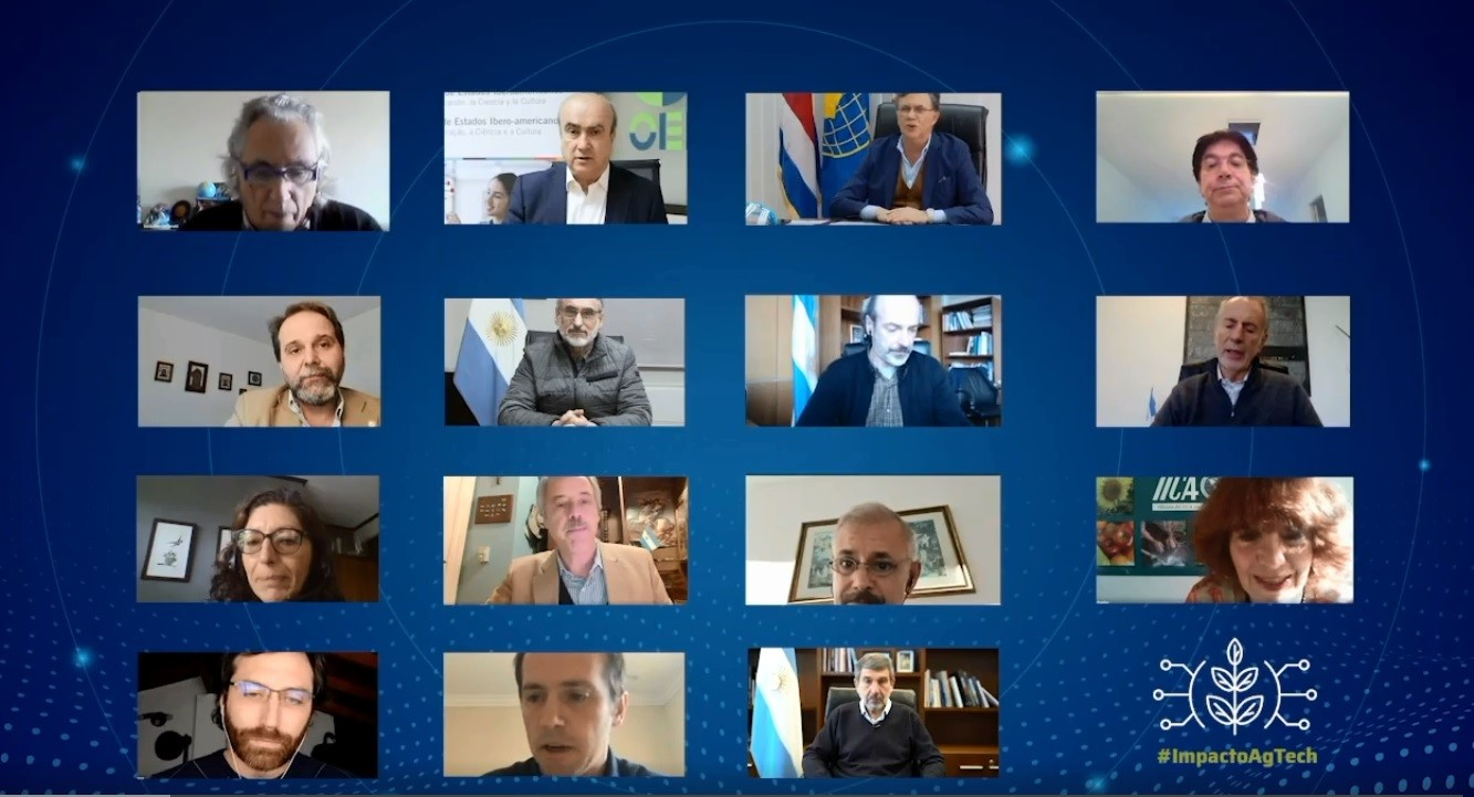 Captura de pantalla del encuentro virtual