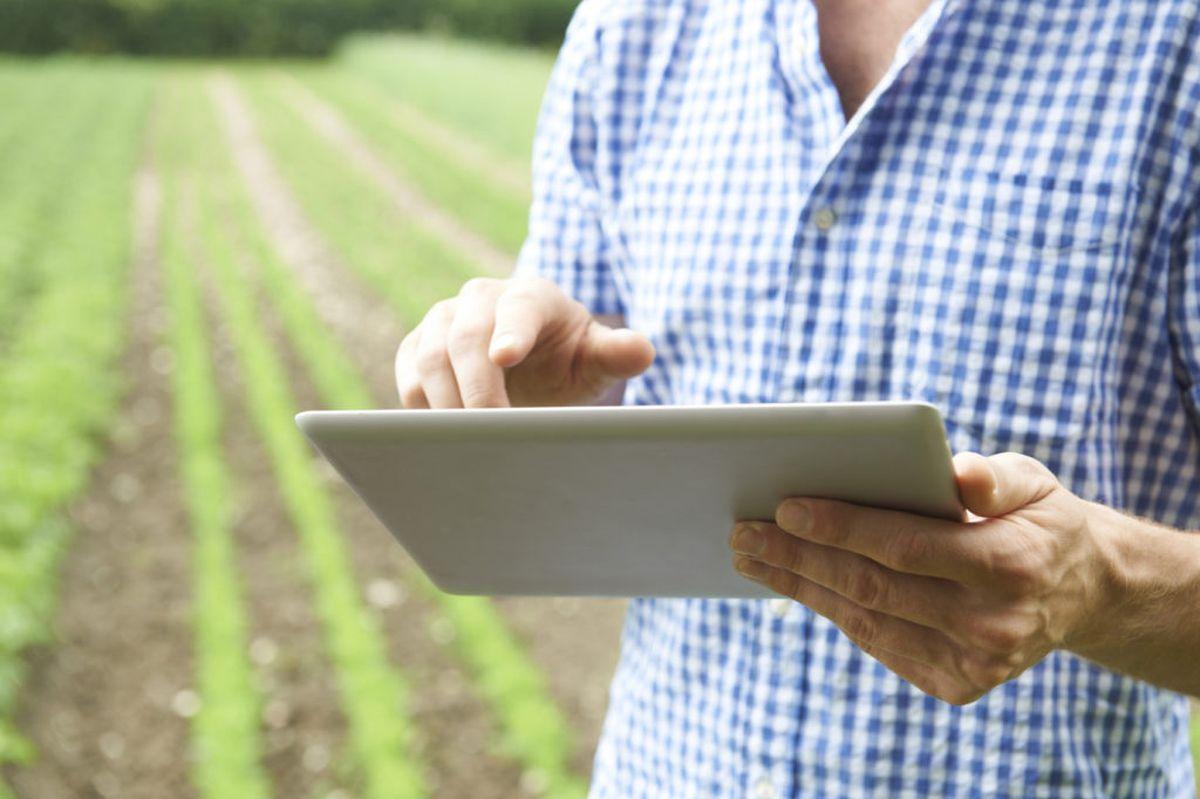 El mercado agro apuesta a la tecnología para mejorar sus procesos