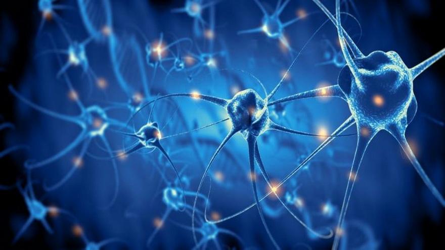 La conexión entre sensores y a red neuronal del cerebro es parte de las investigaciones de Neuralink