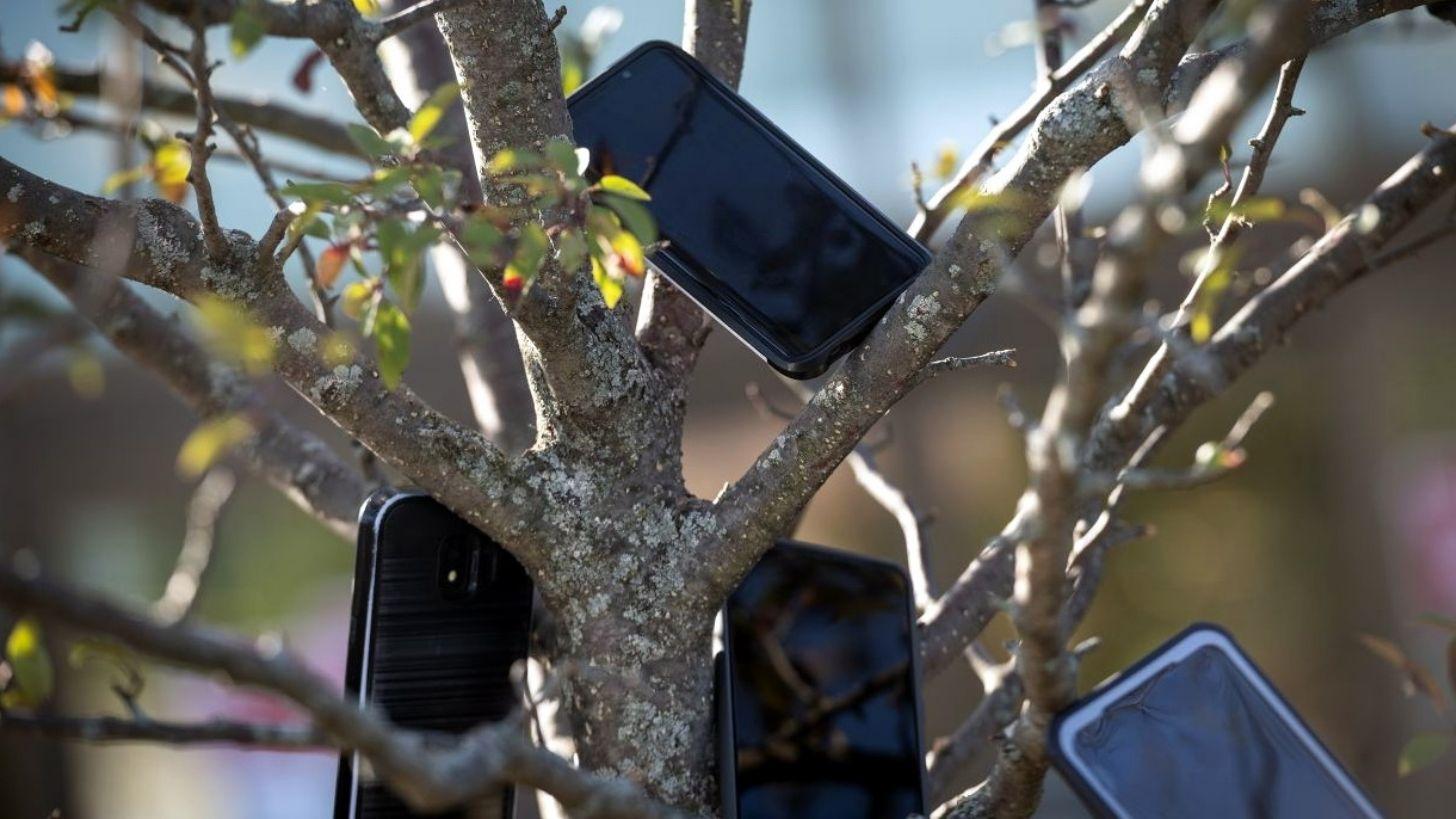 Los conductores sincronizan sus móviles con los colocados en el árbol cerca de la estación de entrega de pedidos y esperan
