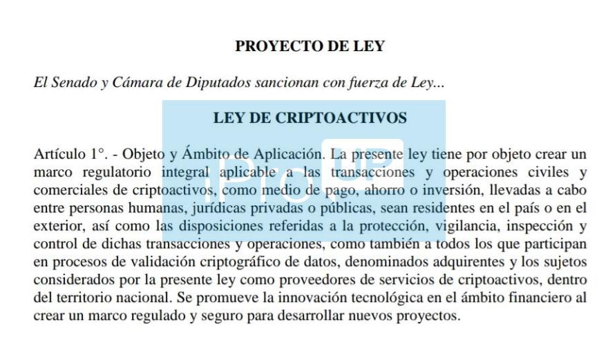 Fascímil del proyecto del diputado Ignacio Torres