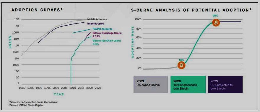 Bitcoin, con 0,3% de penetración, tiene un gran potencial de crecimiento. Fuente: SkyBridge