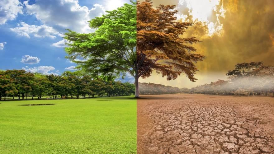 Para Fink, la transición climática presenta una oportunidad histórica de inversión