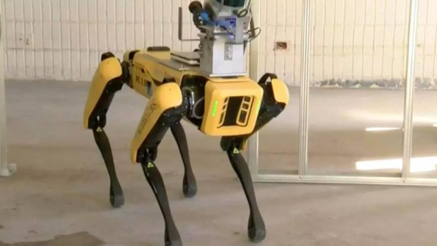 Los perros robots ya están trabajando en las calles de Hawai