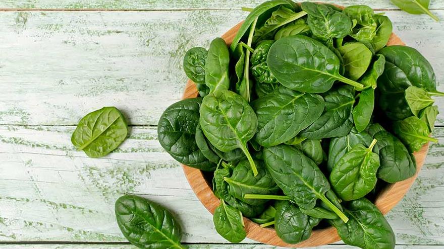 esta hortaliza es rica en hierro y nitrógeno, que son esenciales para este tipo de catalizadores